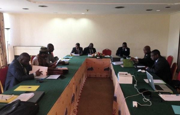 Travaux en pléinière des membres du réseau. Yaoundé 2014